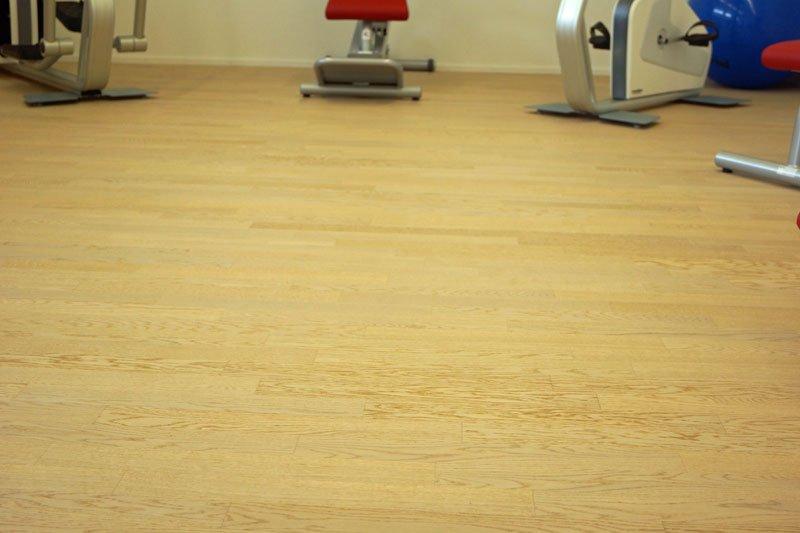 Huusmatt Steinen Fitnessraum